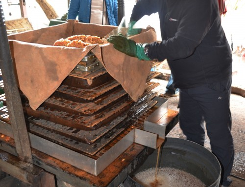 2016 Cider Making Courses